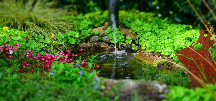 Guide sur l'achat d'un bassin de jardin